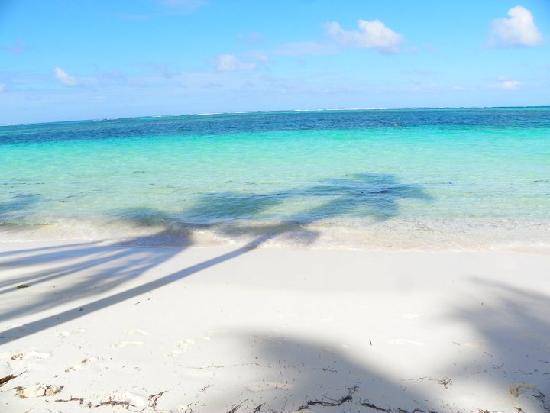 Natura Park Beach - EcoResort & Spa: Great Beach