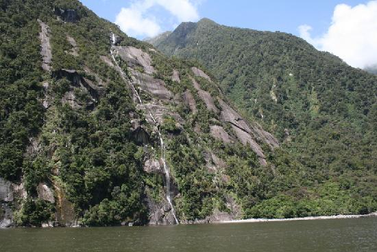 Milford Sound Fly - Cruise - Fly: Am Milford Sound