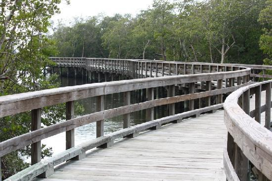 Robinson Nature Preserve : There are many scenic bridges at Robinson Preserve