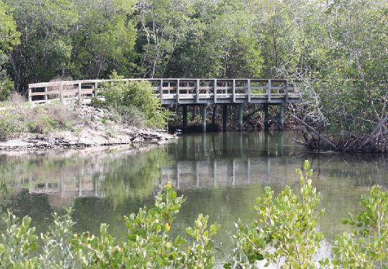 Robinson Nature Preserve : Robinson Preserve is a beautiful and relaxing place to visit