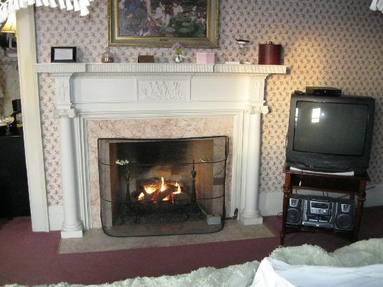 White Springs Manor: Fireplace - granted the tv looks out of place for the time period.