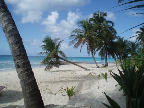 Michelin Apartments: La plage la plus proche de la location