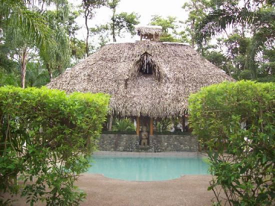 Hotel La Palapa Eco Lodge Resort: Swimming-pool.