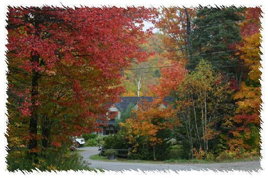 Aux Dormants du Boise: Entouré de couleurs d'automne