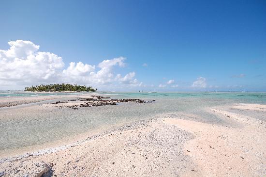 Tikehau Ninamu Resort : The island