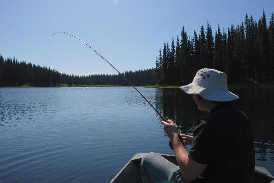 Meadow Lake Fishing Camp: Fish On!  You can't beat this.