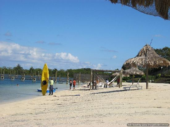 Turquoise Bay Dive & Beach Resort: Tourqouse Bay