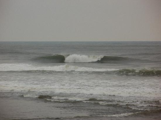 Pondok Pitaya: Hotel, Surfing and Yoga: PERFECT SURF