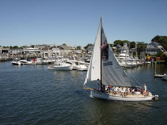 Hyannis Holiday Motel: Scenic sailboat rides on the harbor