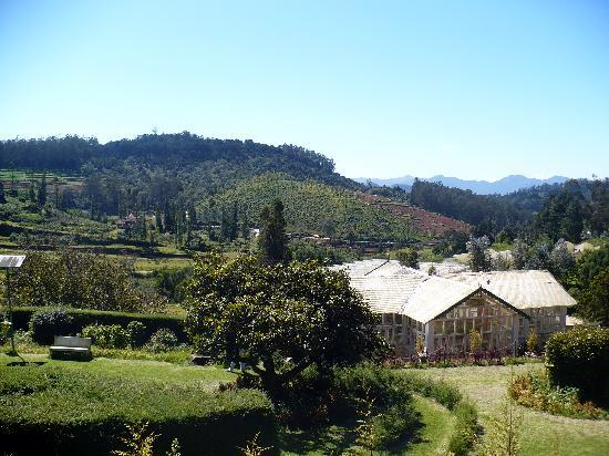 Hotel Mayura Sudarshan Ooty: View from outside the room