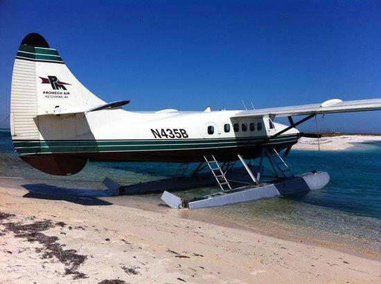 Key West Seaplane Adventures: sea plane