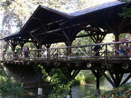 Λυών, Γαλλία: Pont jardin lyon