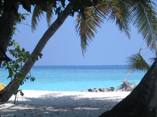 Asdu Sun Island: il mare dalla camera