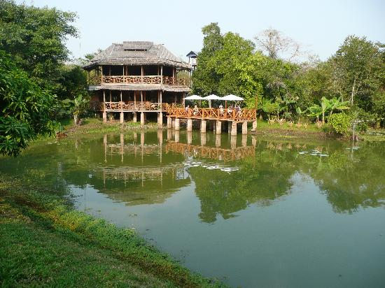 Kingfisher Ecolodge: Restaurant carte postale