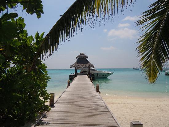 Baros Maldives: Le ponton d'arrivée (et de départ...)