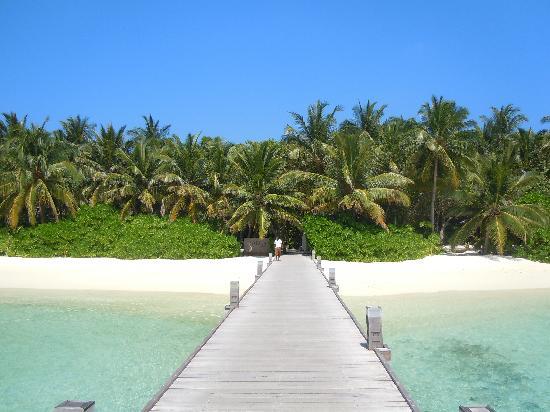 Baros Maldives: L'île depuis le ponton d'arrivée