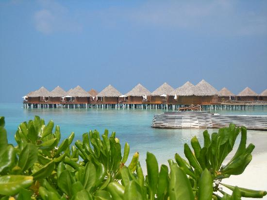 Baros Maldives: Bungalow sur pilotis