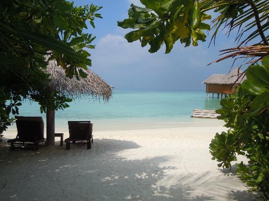 Baros Maldives: La plage