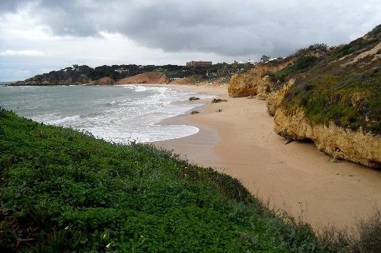 Clube Praia da Oura : Beach (few minutes awalk from hotel)