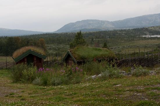 Ringebu Municipality, Norwegia: Nebelpanaroma