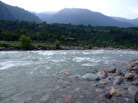 Citrus Manali Resorts: One can just step down here