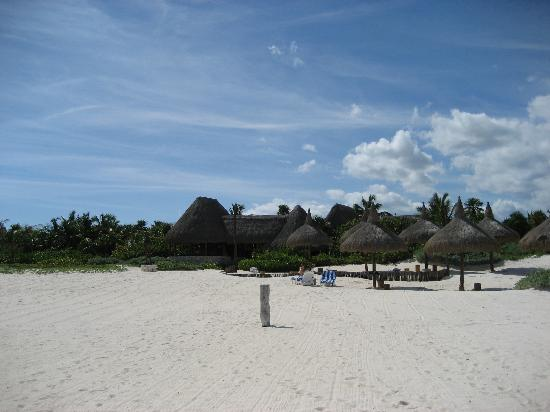 Amarte Hotel: our beach (view from the water)