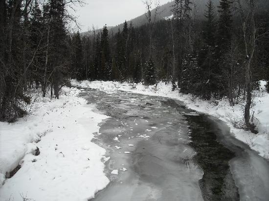 Manning Park Resort: Snowshoeing