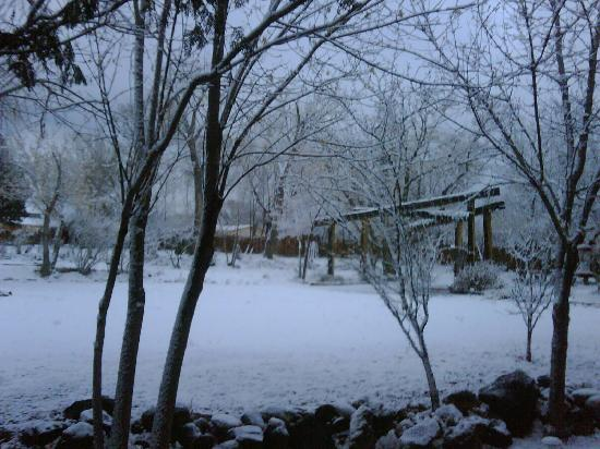 San Geronimo Lodge: view from room 6 on a snowy morning