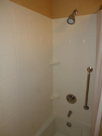 Courtyard Chicago Wood Dale/Itasca : Shower / Tub