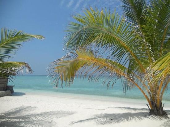 Summer Island Maldives: einfach wunderschön!