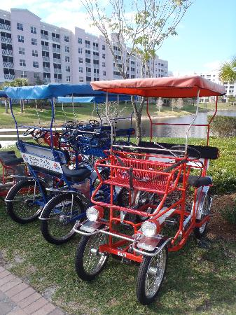 Bluegreen Fountains Resort : Bikes for Four People for Rent