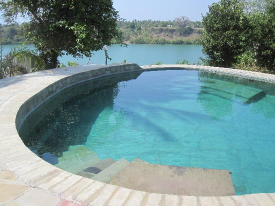 Villa Annchen: Infinity pool overlooking the creek