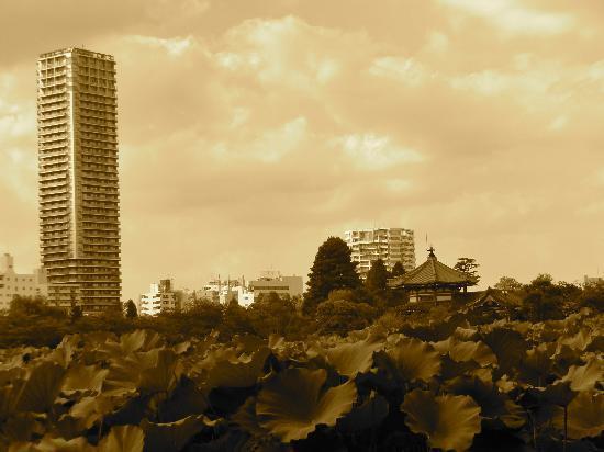 Tokyo, Japon : Ebisu