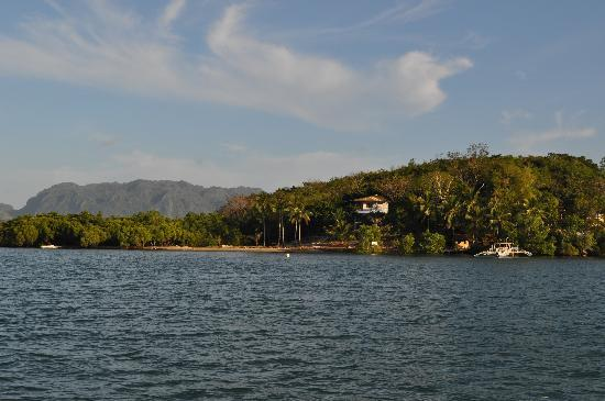 Discovery Island Resort and Dive Center: The site..
