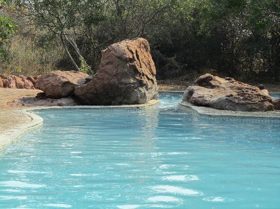 Mopani Rest Camp: la piscina