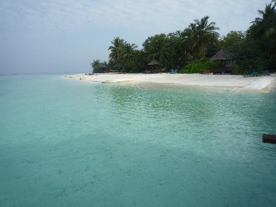 Banyan Tree Vabbinfaru: la mer