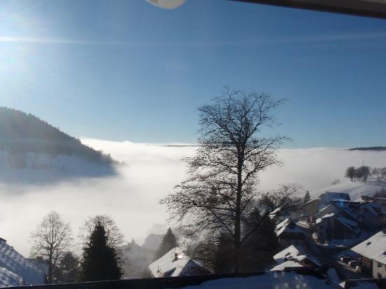 Hotel - Villa Herrihof: Blick aus dem Wintergarten