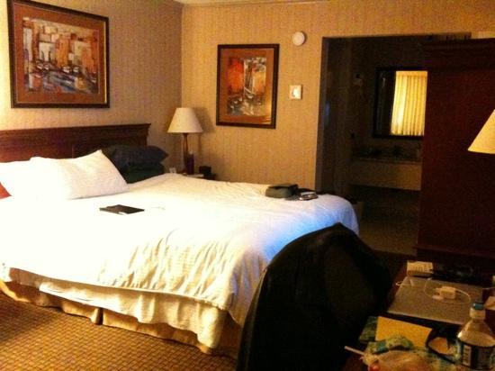 BEST WESTERN PLUS Mountain View Inn: very small room