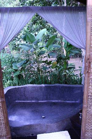 Fivelements Bali Retreat: The bathtub comes with colored mood lights and looks out on the river.