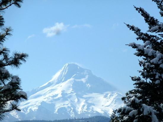 Inn at the Gorge: Mt Hood from just outside of town- Hood River