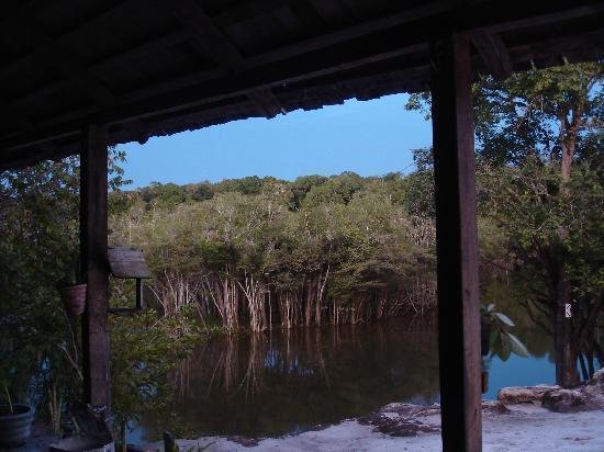 Malocas Jungle Lodge : La vue d'une chambre