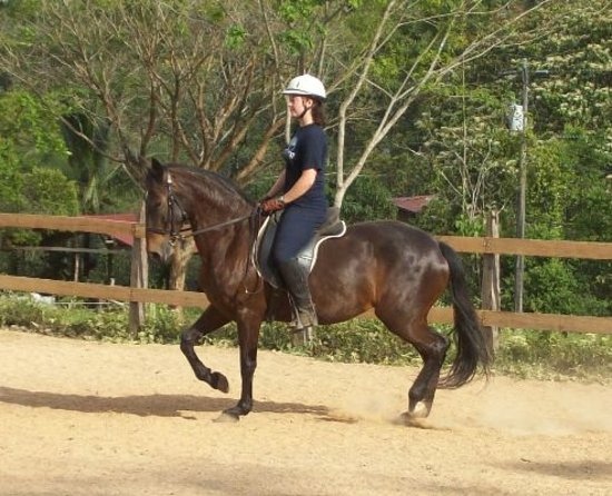 Establo San Rafael Natural Horsemanship Equestrian Center: 4