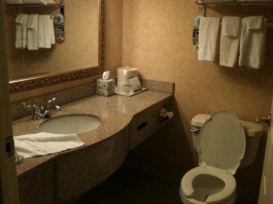 Wingate Inn  D'Iberville : bath
