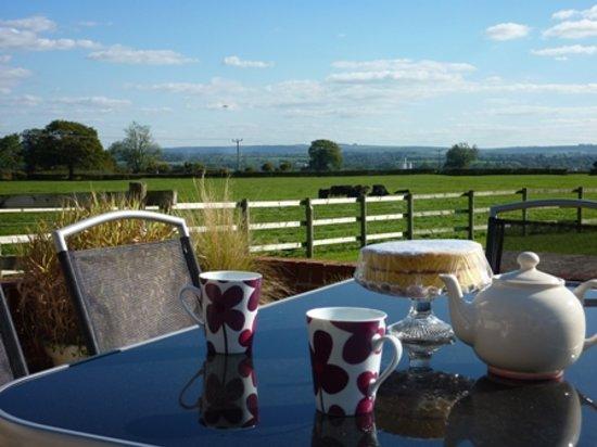 Merkins' Farm Cottages: Tea, Cake, wonderful views at Merkins Farm