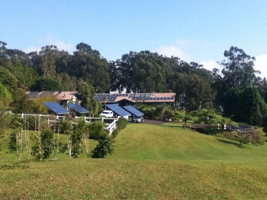 Waianuhea Bed & Breakfast: Quite the spread of solar panels