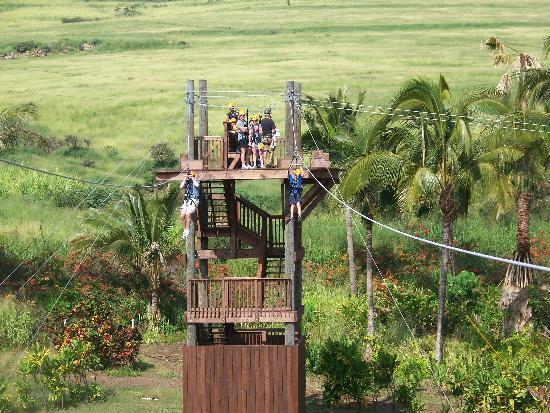 Maui Zipline Company : Fun for all!