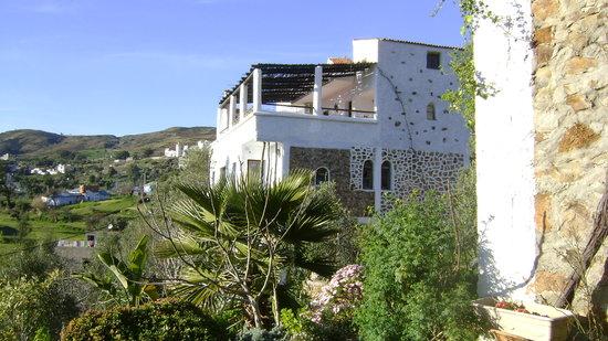 Dar Rihana: l'hôtel vu du jardin