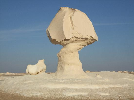 Каир, Египет: a wonderful natural cut rock with the shape of a mushroom and the hen in the white desert.