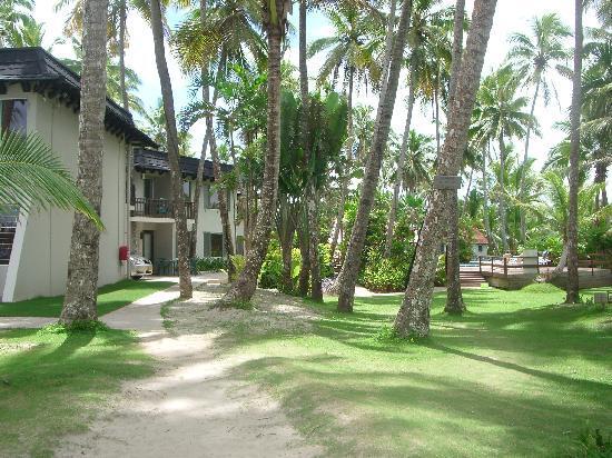 fiji palms resort gardens picture of ultiqa at fiji. Black Bedroom Furniture Sets. Home Design Ideas