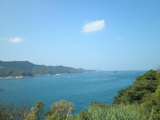 Yusumizugaura Terrace Field: 段畑から見た宇和海